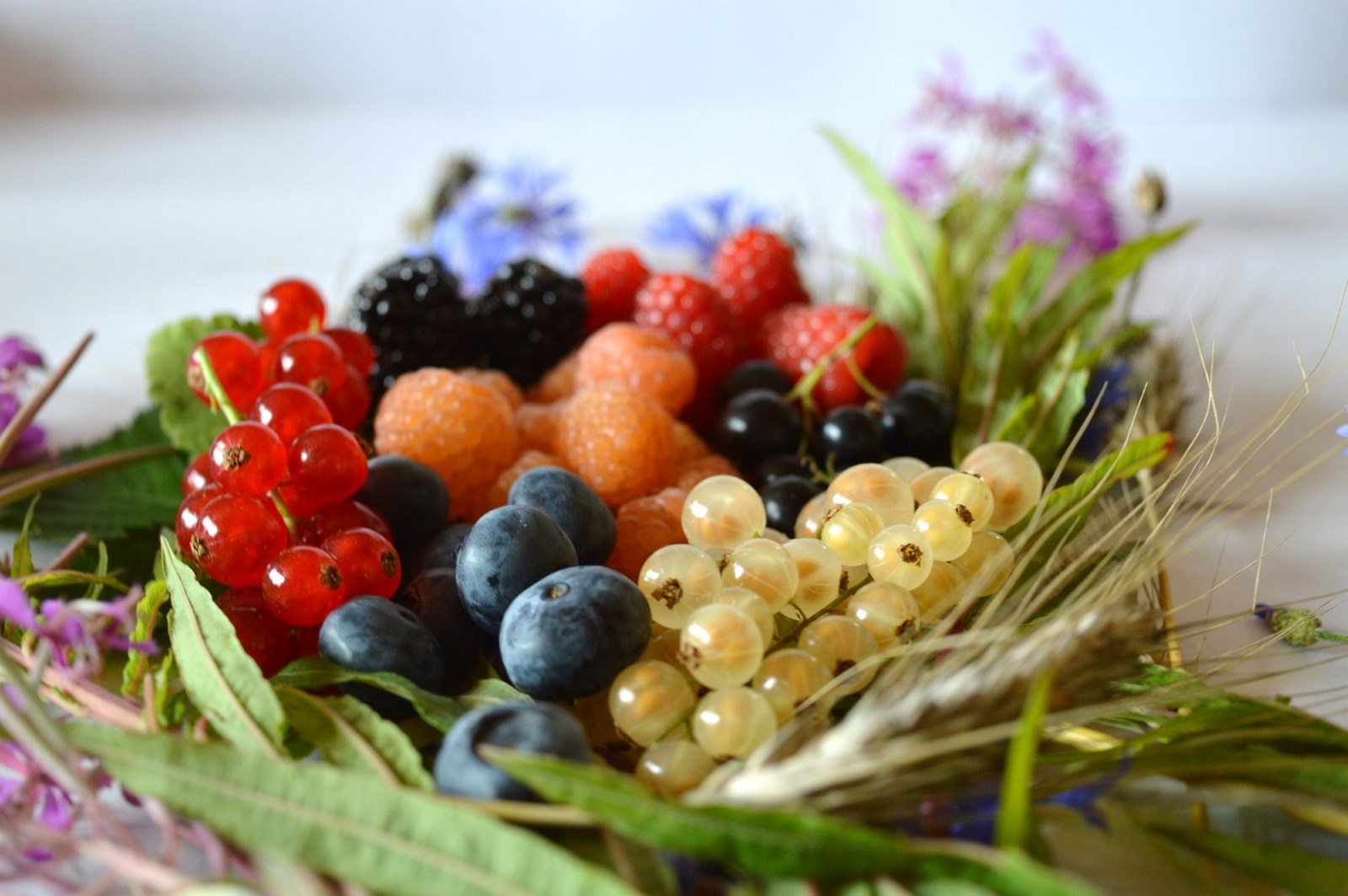 composition de petits fruits