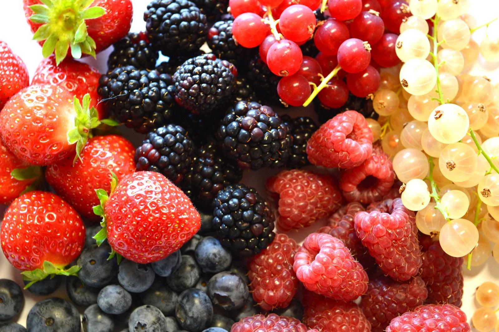 Petits fruits rouges et noirs du Velay