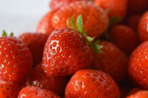 Nos fraises